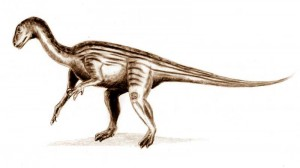 Thecodontosaurus