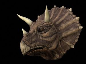 7419_triceratops3
