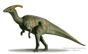 Parasaurolophus 1