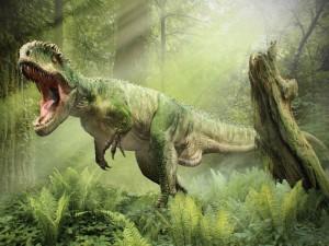 T Rex-547817_800