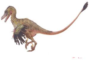 Velociraptor 3