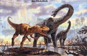 allosaurus 3
