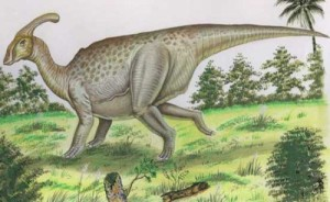 parasaurolophus 4