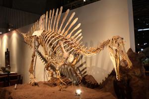 spinosaurus 5