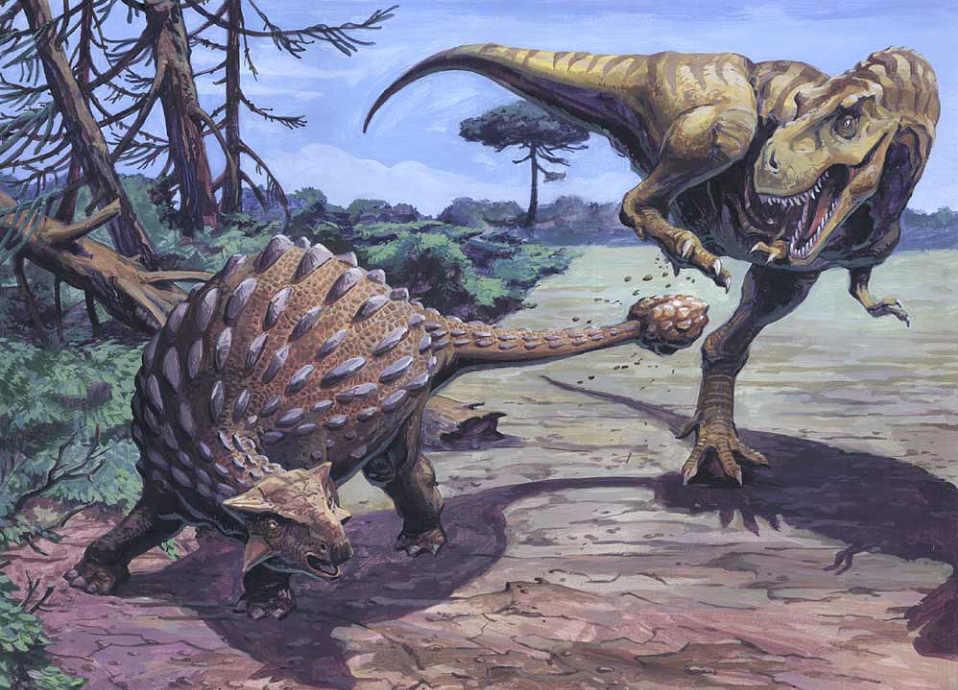 Ankylosaurus - Fotos, Hechos y Historia | Dinosaurios T Rex Vs Triceratops Fighting