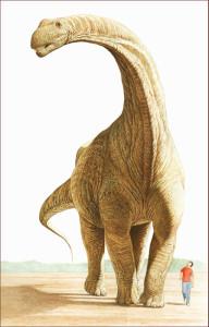 Argentinosaurus-chiappealdo