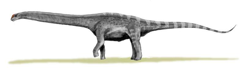Resultado de imagen para argentinosaurus