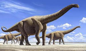 ArgentinosaurusHuinculensis1