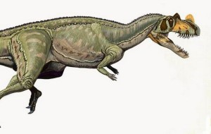 Ceratosaurus_nasicornis_DB