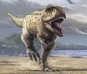 carcharodontosaurus 5