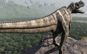 ceratosaurus 2