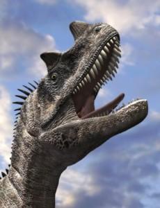 ceratosaurus-head