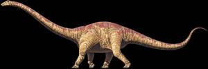 seismosaurus 1