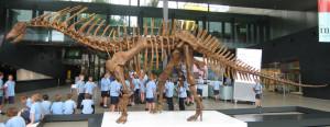 Amargasaurus_(1)