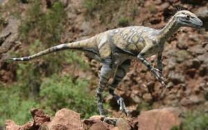 Eoraptor_1_resize