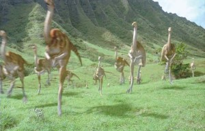 Gallimimus-herd