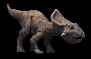 Protoceratops_rg