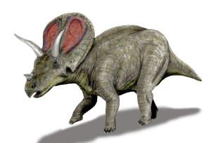 Torosaurus_BW