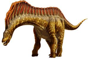amargasaurus_480
