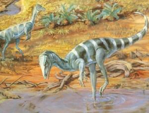dinosaur-images-036-resize