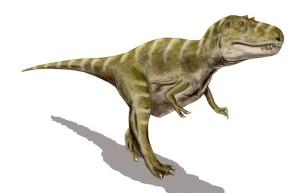 Gorgosaurus_BW
