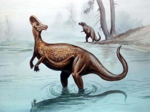 corythosaurus (1)