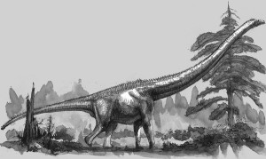 mamenchisaurus_constructus_by_cheungchungtat-d33v5u6
