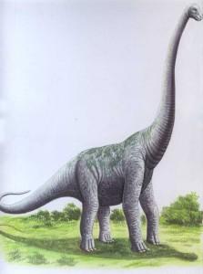 pcab165_ultrasaurus