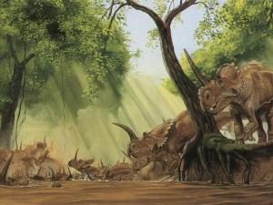 5315144centrosaurus