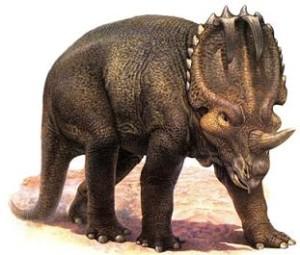 centrosaurus-3